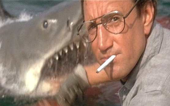 jaws_swims_behind_chief_brody.jpg