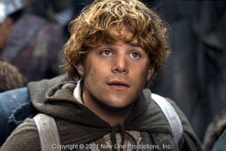 http://www.lonelyreviewer.com/wp-content/uploads/2008/04/samwise.jpg